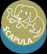 SUCAPULA
